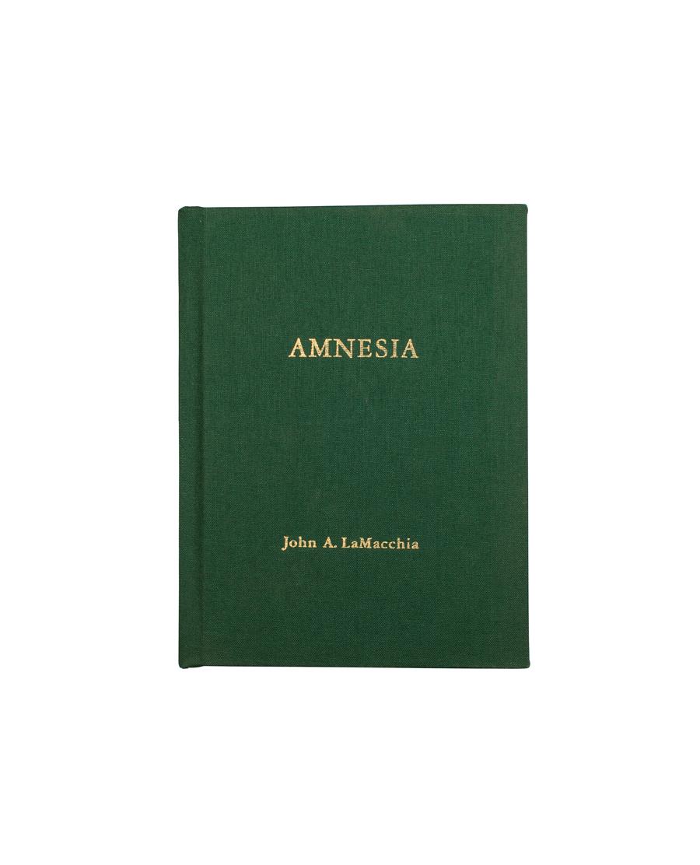 amnesia_1
